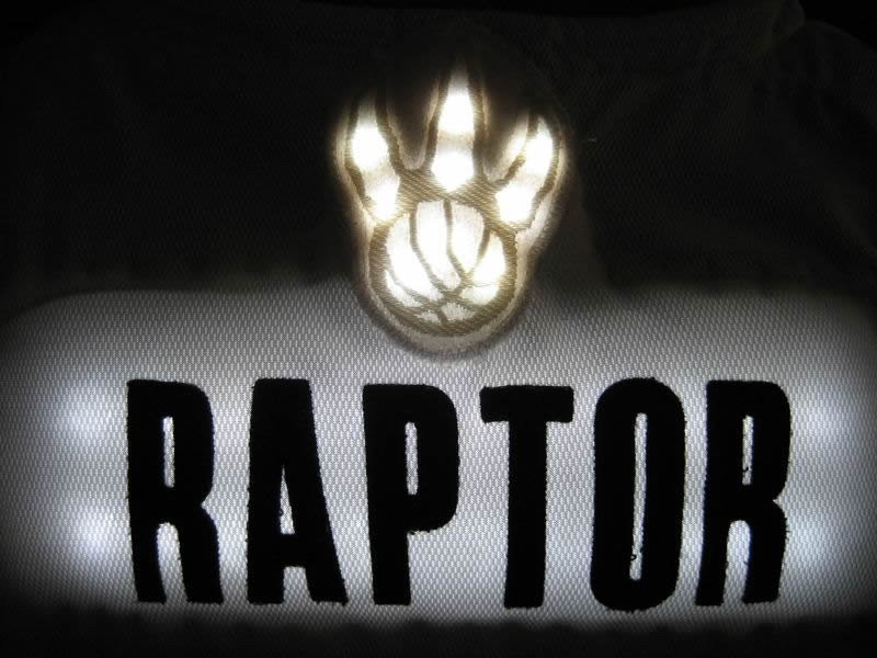 Toronto Raptors Mascot - Enlighted Designs